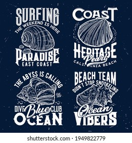 Tshirt print with ocean shells, vector sketch emblems for apparel design. Isolated labels with sea conch and typography . Hand drawn t shirt prints for surfing, snorkeling or diving club sport team