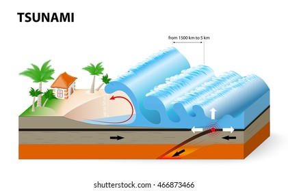 A tsunami is a series of huge waves. It washes against the coast several times with great speed and force. Tsunamis generated by submarine earthquakes travel at subsonic speed across the ocean surface
