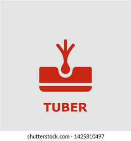 Tuber symbol. Outline tuber icon. Tuber vector illustration for graphic art.