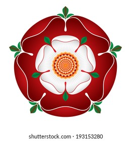 Tudor Dynasty Rose - detailed vector shaded illustration - English Symbol -  Combined the red rose of the house of Lancaster and the White rose of the house of York after the War of The Roses