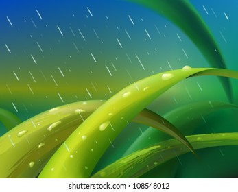 Tuft of green grass between falling raindrops
