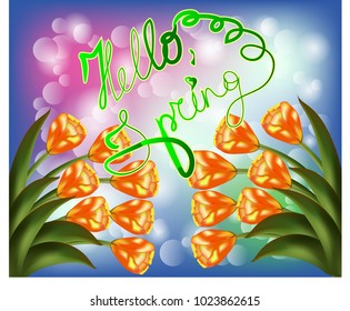 Tulip bouquet over white background with custom text Hello Spring. Vector illustration.
