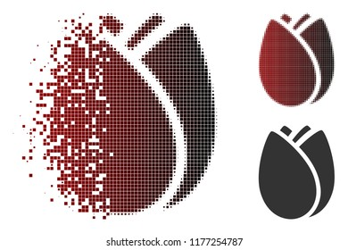 Tulip bud icon in dissolved, dotted halftone and undamaged entire versions. Pieces are composed into vector sparkle tulip bud symbol.