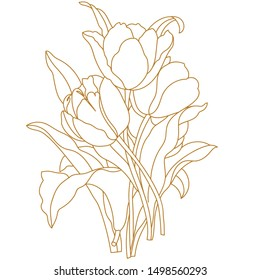 Tulip flower graphic Golden white isolated sketch illustration vector