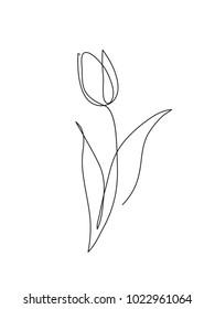 Tulip flower line art. Minimalist contour drawing. One line artwork