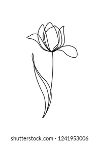 Tulip flower line continuous . Minimalist art. One line drawing