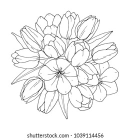 Tulips - Flower  bouquet. Vector coloring book for adult – Flower bouquet. Coloring book page. Hand-drawn illustration for coloring. All elements are isolated and editable.