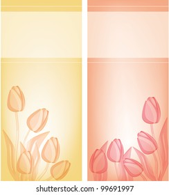 Tulips gentle background . eps 10 files