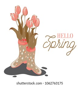 Tulips in rainy boots. Vector illustration of pink and orange tulips in wellies on white background. Hello Spring!