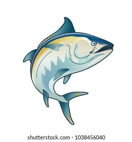 Tuna Blackfin Vector Illustration jump of tuna fish bluefin drawing