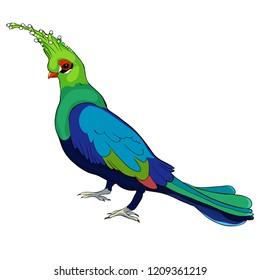 Turako Livingston Bananoed Tropical Parrot  vector illustration