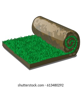 Turf or rolled lawn isolated on white background. Vector cartoon close-up illustration.