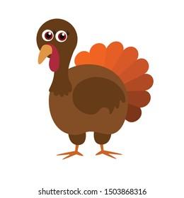 Turkey bird, flat, vector illustration