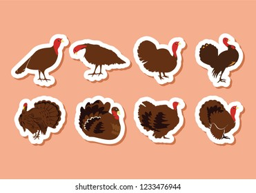 Turkey clipart for thanksgiving. Different poses ad illustration of turkey.