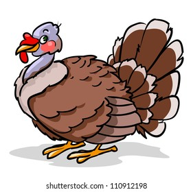 Turkey isolated on white, Thanksgiving turkey
