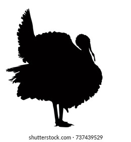 Turkey silhouette, vetor illustration