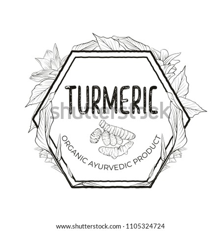 Turmeric Label Root Flowers Leaves Vector Stock Vector Royalty Free
