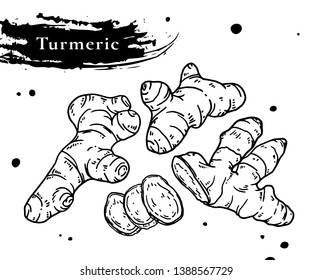 Turmeric root vector hand drawn illustration.Curcuma spice.For food design.health care products.Ginger root.Herbs and spices vector.Ginger set.Root,Detox food ingredient.Healthy food.Alpinia galanga.