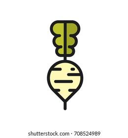 Turnip. Vector icon