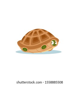 Turtle afraid to come out of its shell. Frightened, confused, embarrassed, puzzled, bewildered, discouraged, terrified, emotions in the hiding tortoise. Isolated cartoon vector clip art illustration.