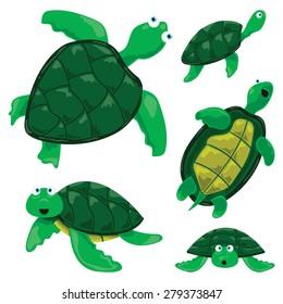 Turtle Cartoons