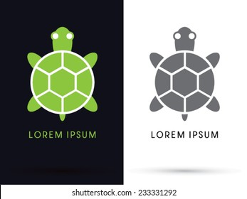 Turtle icon, symbol, logo, Vector.