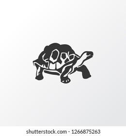 Turtle icon symbol. Premium quality isolated tortoise element in trendy style.
