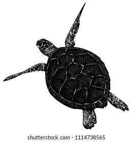 Turtle illustration black and white