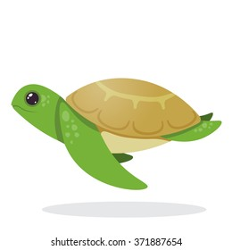 Turtle. Image of an turtle.