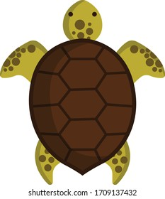 Tortoise Shell Top View Images Stock Photos Vectors Shutterstock
