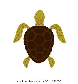 Turtle top view. Vector illustration.