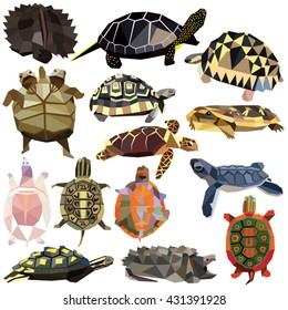 Turtle Tortoise Terrapin set colorful low poly designs isolated on white background. Vector animals illustration. Collection in a modern style.