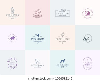 Twelve Abstract Feminine Vector Signs or Logo Templates Set. Retro Floral Illustration with Classy Typography, Birds, Lamb, Duck, Hound and Elephant. Premium Quality Emblems. Isolated