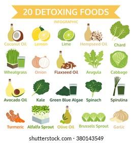 twenty detoxing foods, info graphic flat food, vector illustration