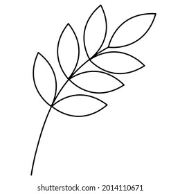 Twig with leaves. Sketch. Vector illustration. Colorless plant. Leaves on the stem. Coloring book for children. Doodle style. Outlines on an isolated white background. Idea for web design.