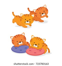 Twin kittens. Two little cute kittens on white background.