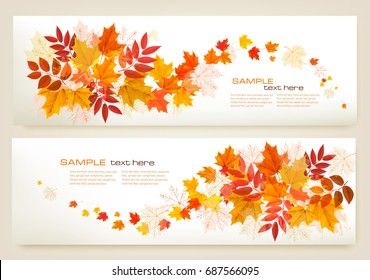 Two abstract autumn banners with colorful leaves Vector