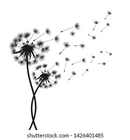 Two abstract black dandelion, flying seeds of dandelion - stock vector