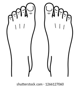 Two bare human feet. Top view. Foot legs. Vector flat outline icon illustration isolated on white background.