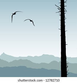 Two birds circling around cleared forestry area with one silhouetted tree still standing