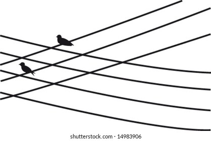 Two birds on power supply line