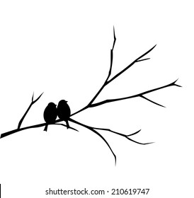 Two birds sitting on a branch vector