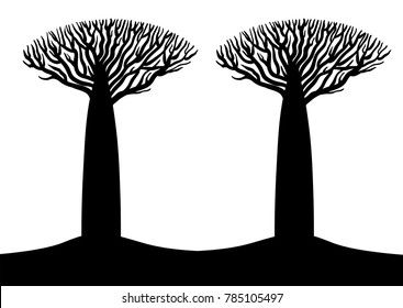 Two black and white baobab stylized trees silhouettes flyer template, vector