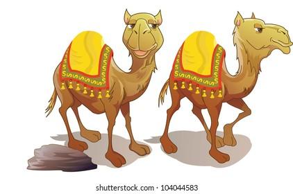 Two Camels, Brown, Smiling, vector illustration