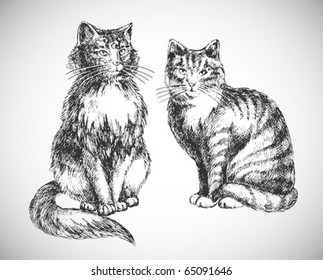 two cats realistic drawing - professional high quality
