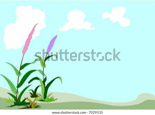 Two color flower and blue sky background