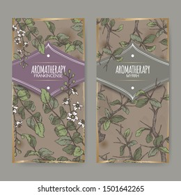 Two color labels with Boswellia sacra aka frankincense and Commiphora myrrha aka common myrrh sketch on vintage background. Great for traditional medicine, perfume design, cooking or gardening.
