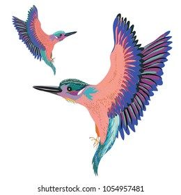 Two colorful birds flying. Vector illustration of two birds on white background