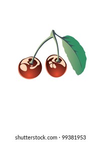 Two connected juicy cherries realistic vector