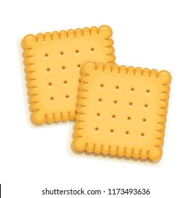 Two delicious biscuit. Sweet cookie. Delicious cookies. Realistic cracker. Yummy crackers. Breakfest snack. Tasty food. Isolated white background. EPS10 vector illustration.